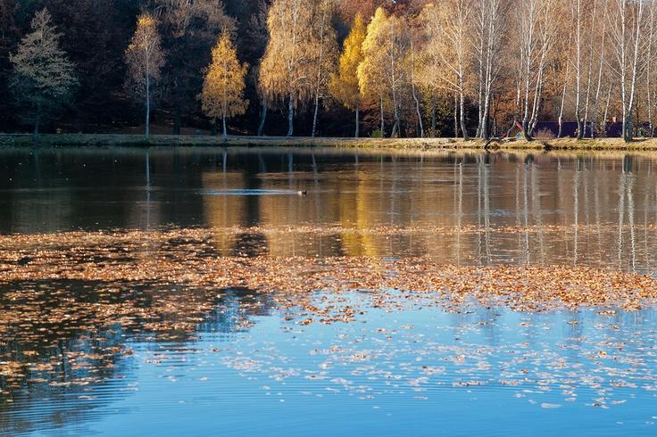 Lacul Bodi, Baia Mare