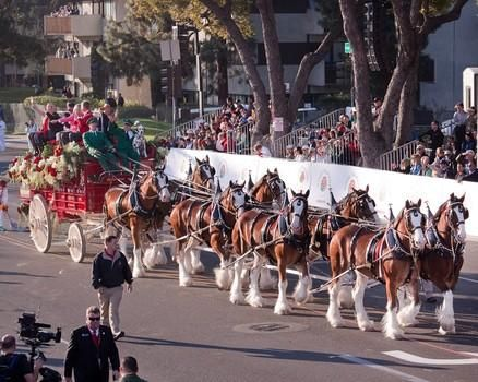 rose bowl parade 2015  | Rose Bowl Parade 2015 Live Stream And Guide: Watch The 126th ...