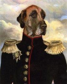Cane da generale francese