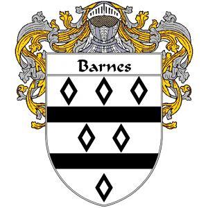 Barnes Coat of Arms | Coat of arms, Barnes, Irish heritage