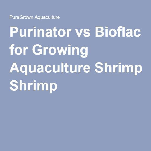 vannamei shrimp farming techniques pdf