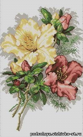 http://podsolnyx.vishivka-st.ru/_ld/2/61043871.jpg