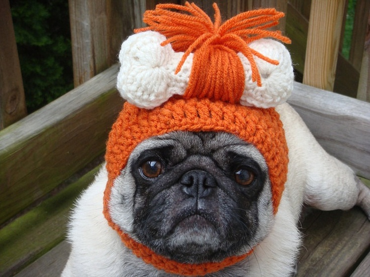LOL! Pebbles Dog Hat by Sweethoots via Etsy.Crazy Pugs, Caves Boys, Pretty Pets, Cutest Things, Dogs Hats, Pebble Caves, Boys Dogs, Funny Animal, Caves Girls