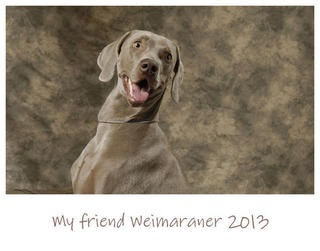 A calendar, made with love and put on sale to raise funds to help Greta and Weimar, a couple of lovely weimaraner in great difficulties. Please, repin and share with all your friends