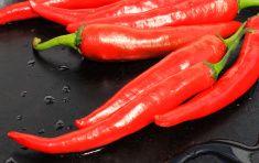 Красный перец крупным планом, на черном фоне stock photo