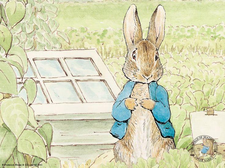 Beatrix Potter procurou várias editoras para publicar seus livros, fez setenta tentativas e sessenta e nove falharam. Sua carreira como escritora e ilustradora infantil, começou quando The Tale of Peter Rabbit foi publicada por Frederick Warne em 1902.