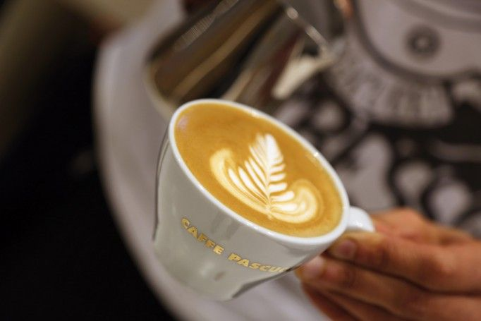 flat white cappuccino pascucci