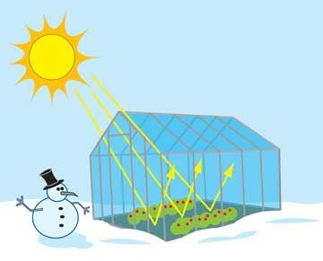 What is a greenhouse? Drawing of greenhouse, with glass walls and roof, plants growing inside. Sunlight coming in through roof, but bounces off inside of roof and cannot escape.