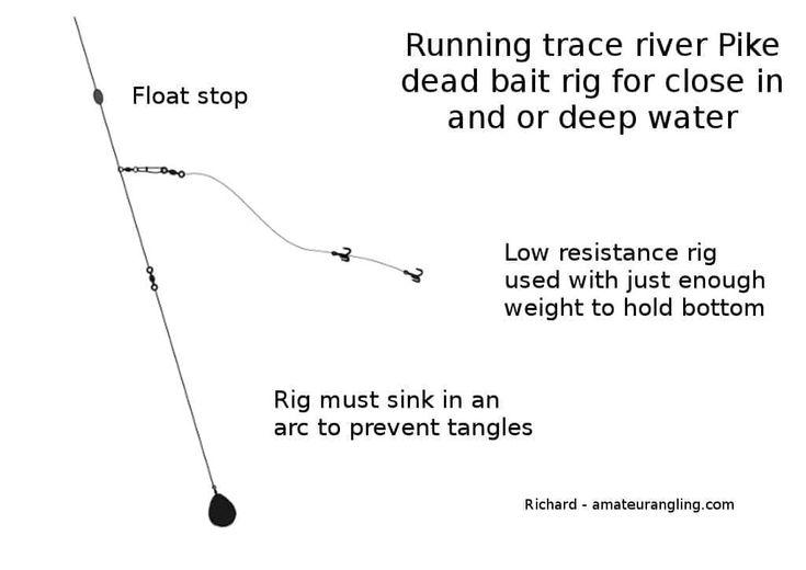 dead bait running trace rig