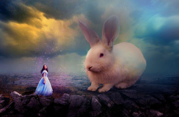 Big Rabbit and Girl by onurado