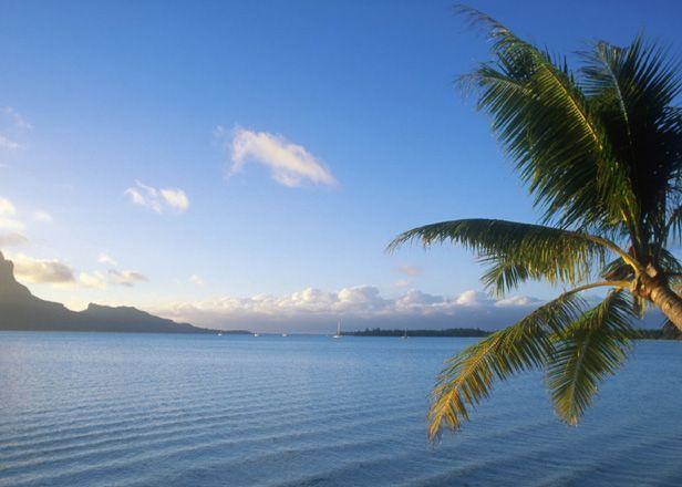 Kids Cruise free in Fiji - 3,4 and 7 nights exploring the Fijian islands - BYOkids