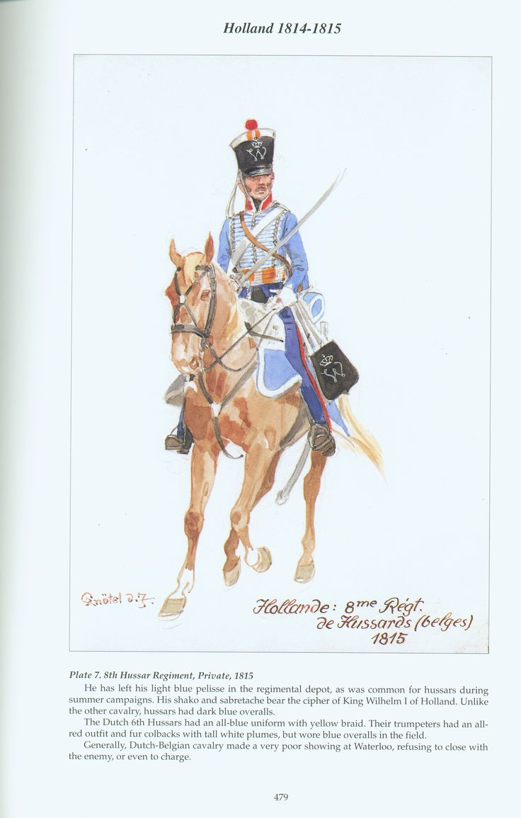 Holland: Plate 7. 8th Hussar Regiment, Private, 1815