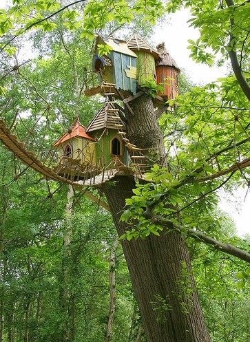Treehouses!Birdhouses, Dreams, Tree Houses, Fairies House, Treehouse, Birds House, Trees House, Childhood, Bridges