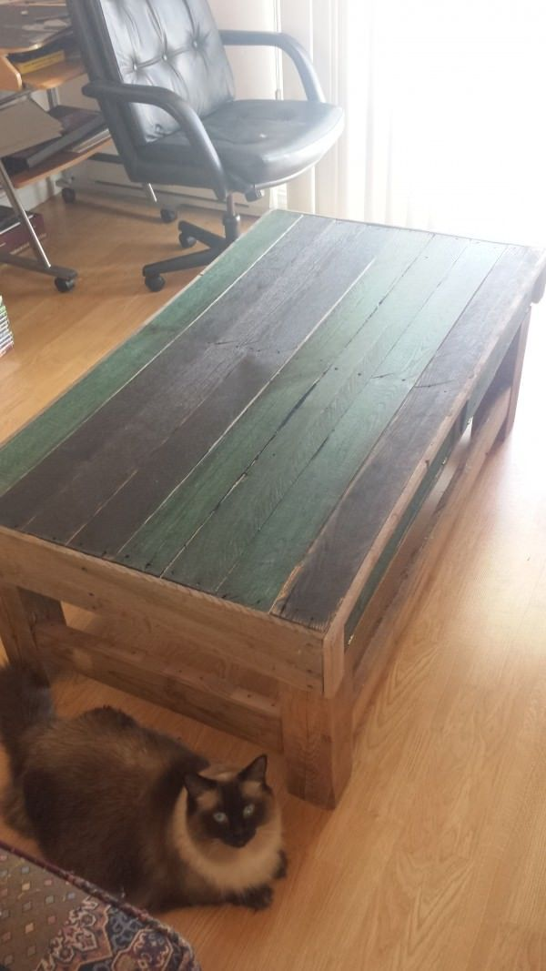 This is my first pallet project. I burnt the pieces on top that are black and then used a green wood stain for the pieces that are green. I then used a vinegar and steel wool stain for the base…