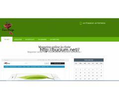 web design magazine online la cheie