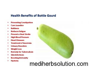 Bottle Gourd vegetable has many amazing health benefits for human body.Bottle Gourd will cure jaundice,baldness,constipation,heart disease,blood pressure