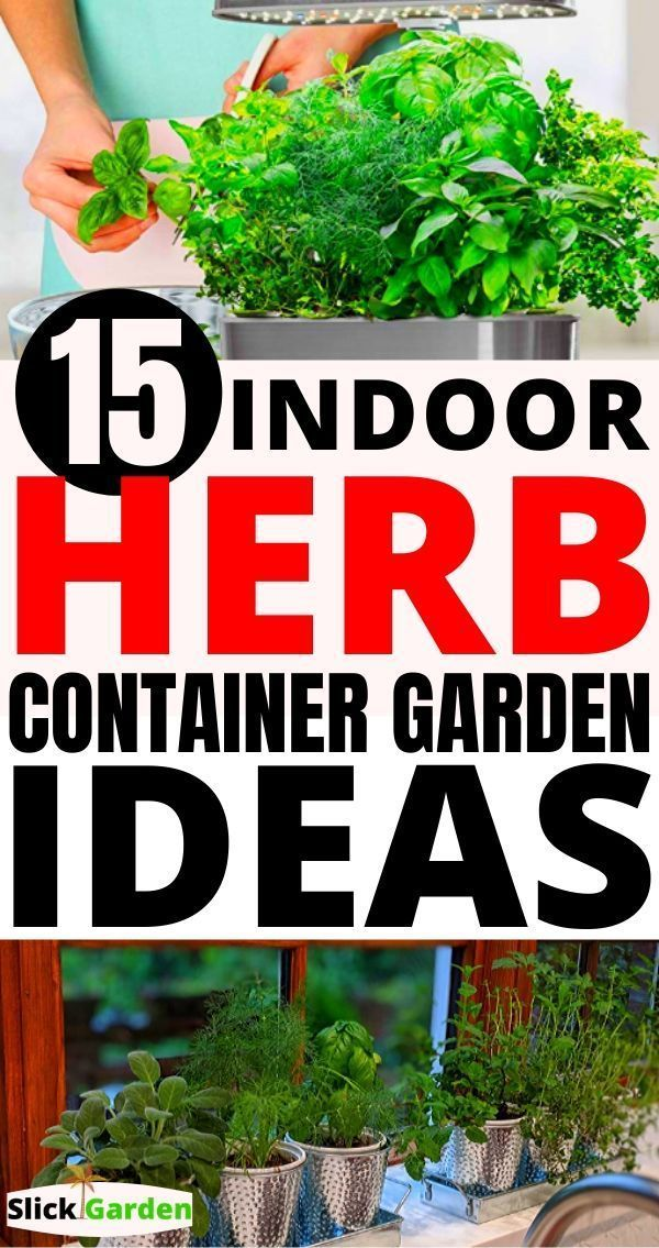 15 Indoor Herb Container Garden Ideas Growing Herbs Inside Your