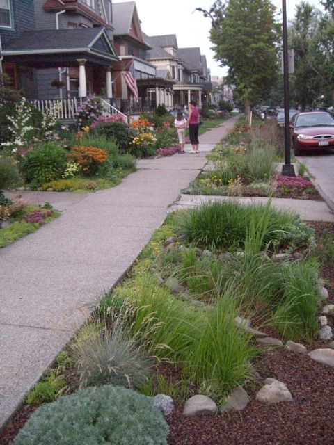 "Low-maintenence, minimal water. Grasses, sedums, rocks and mulch create a pretty strip of land between the sidewalk and street. ( Sometimes dubbed a ""hellstrip"")"