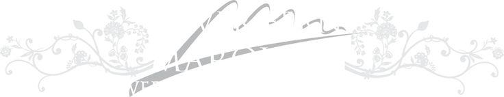 logo.png (1067×206)