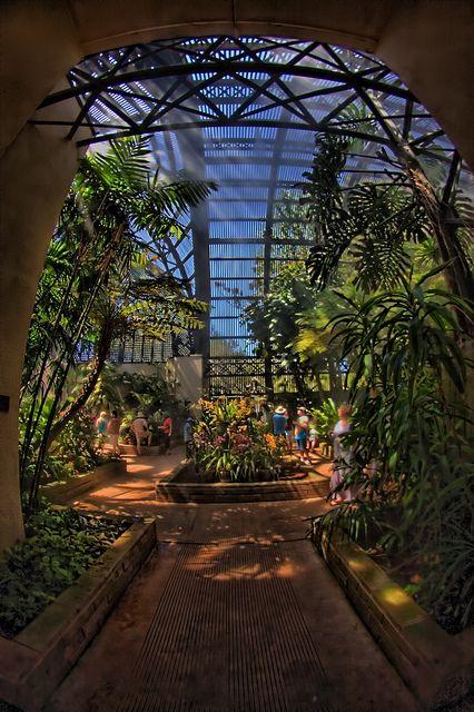 Best 25 Botanical Gardens Ideas On Pinterest
