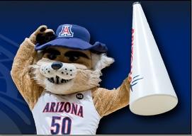 University of Arizona, Arizona: Arizona Go Wildcats, Arizona Wildcats, Student, Uofa Wildcats, Goooo Cat, Wildcats Official, Wildcats Pride, Beloved Wildcats