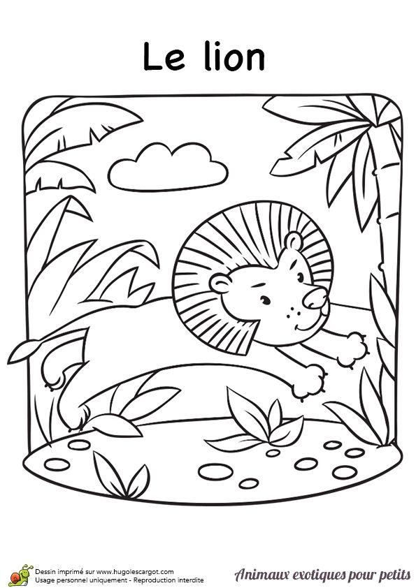 138 best Autour des animaux de la savane images on Pinterest