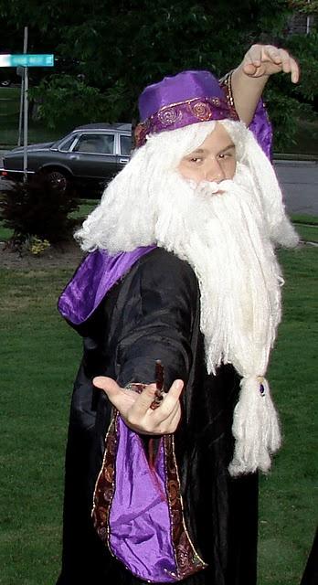 Dumbledore Wig 13