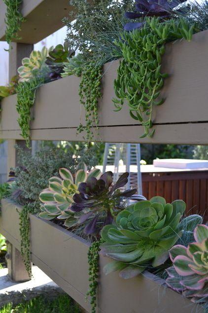 contemporary landscape by living gardens landscape design - Living Gardens Landscape Design