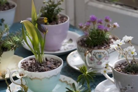 Garden tea party with a difference. One lump or two, luv?