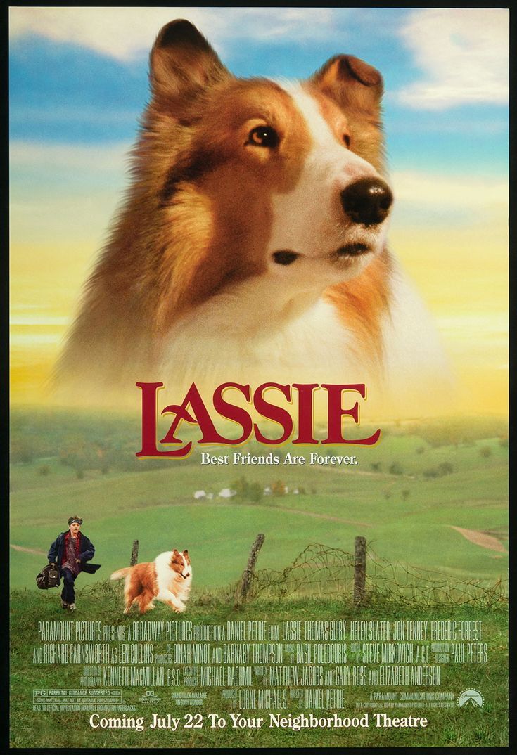 17 Best Images About Lassie 1994 On Pinterest Loyalty
