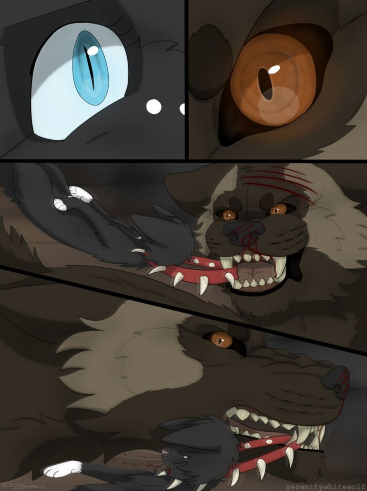 e_o_a_r___page_89_by_serenitywhitewolf-d95dobe.png (773×1033)
