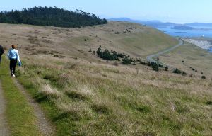 5 favorite hikes on San Juan Island | The Seattle Times