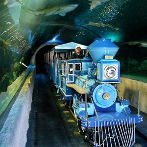 Houston CityPASS®.. Discounted admission to Houston's 5 best attractions. $46 for adults