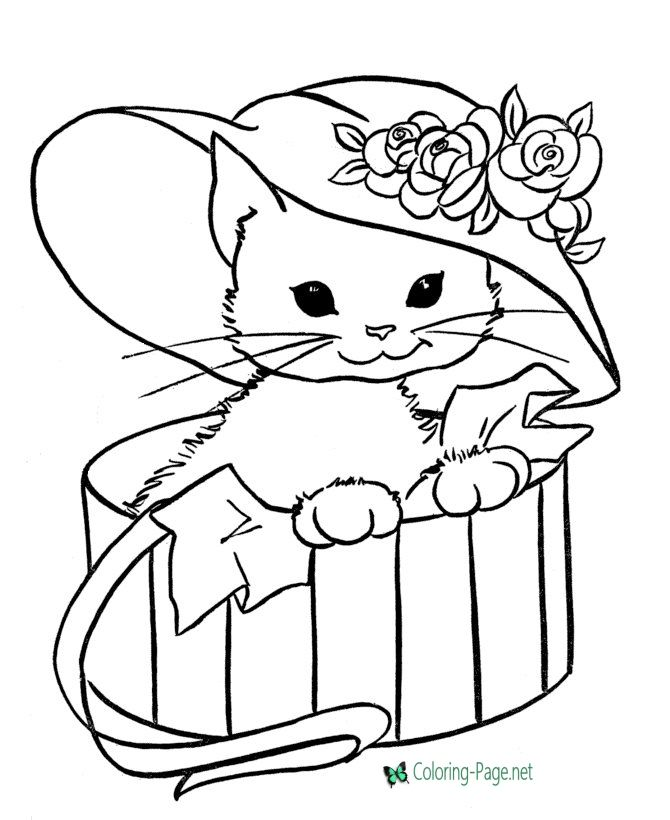 Cat Coloring Pages Cute Kitten And Cats Many Coloring Pages To