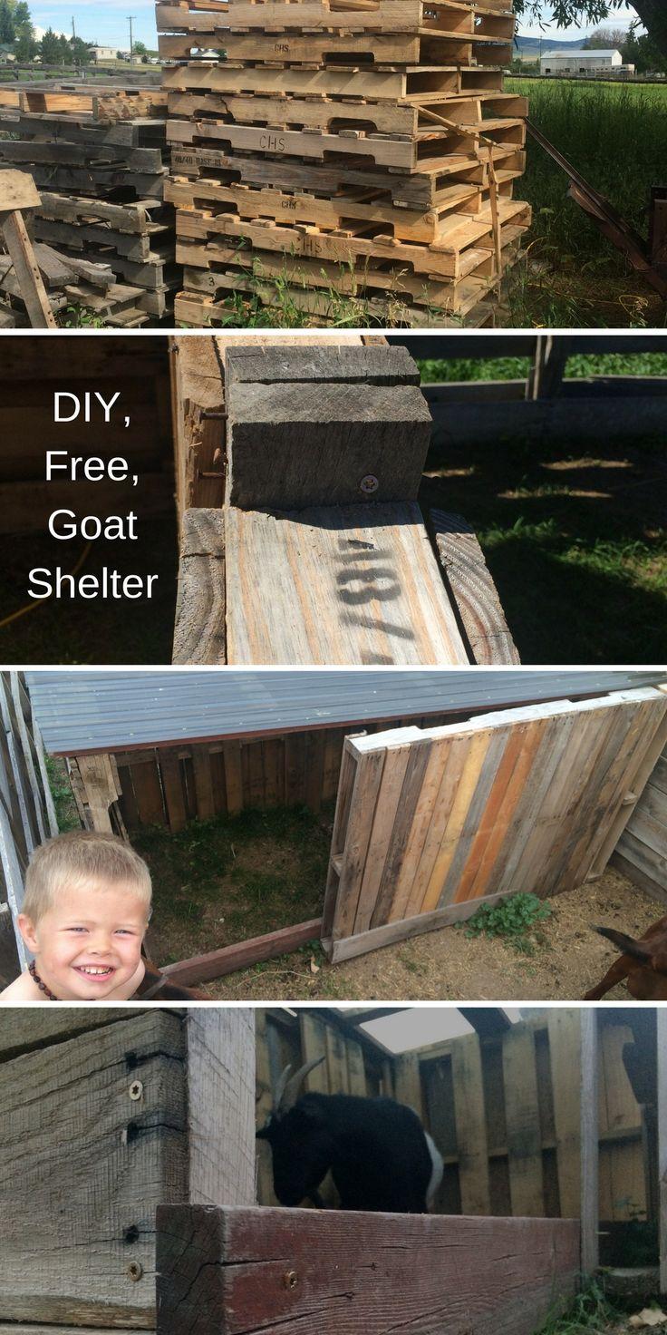 best 25 goat house ideas on pinterest goat pen goat shelter