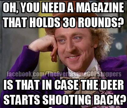 You need a gun magazine that holds 30 rounds?