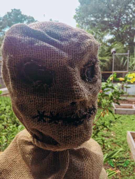 DIY Creepy Halloween Scarecrow Home and Earth Market