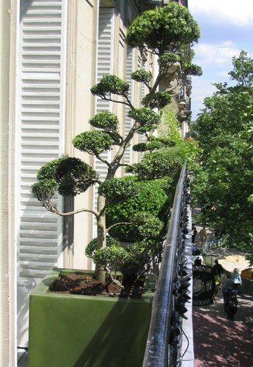 aménagement balcon : aménagement petit balcon par Sabz - Balcon et terrasse : 10 idées d'aménagement paysager