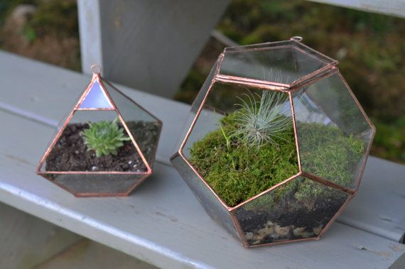 Dodecahedron Terrarium Kit — a touch of nature for a small space.: Doors, Flower Pot, Color, Geometric Shapes, Little Gardens, Terrarium, Plants Holders, Small Spaces, Stains Glasses