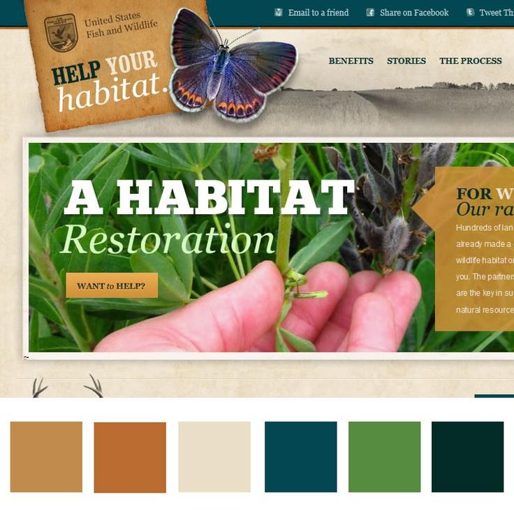 quiet sophistication website color