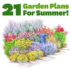 37 best images about garden full sun perennials on for Flower garden designs and layouts