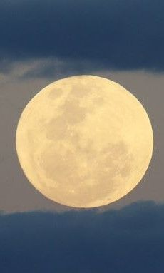 Super Moon rising over Surfers Paradise QLD Australia14th Nov 2016