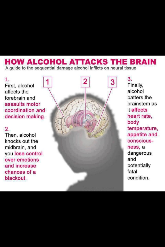 effects of alcohol on a human The intensity of the effect of alcohol on the body is directly related to the amount consumed  us department of health and human services and us department of .