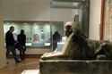 Exhibition: Pharaoh King of Egypt at Bristol Museum & Art Gallery