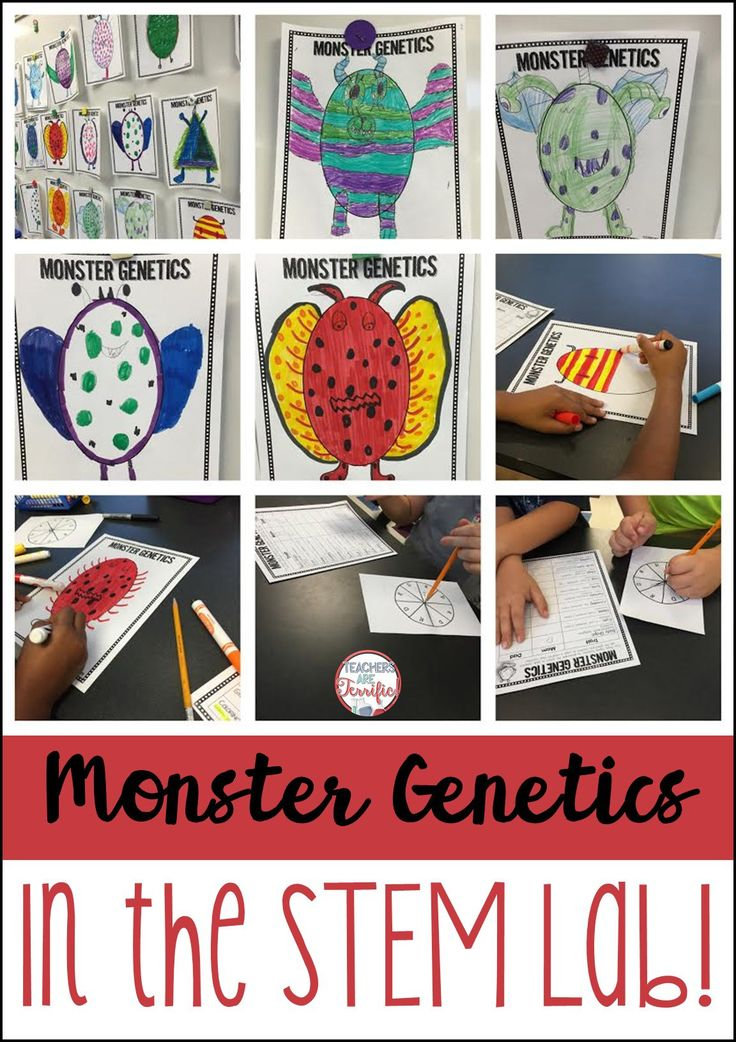 Heredity and genetics for kids