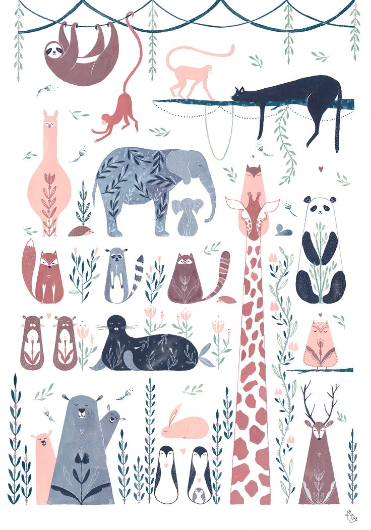 My favorite animals from Pole to Pole.