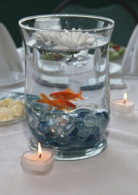 25 best ideas about floating flowers on pinterest for Betta fish floating