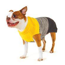 Color Block Dog Sweater