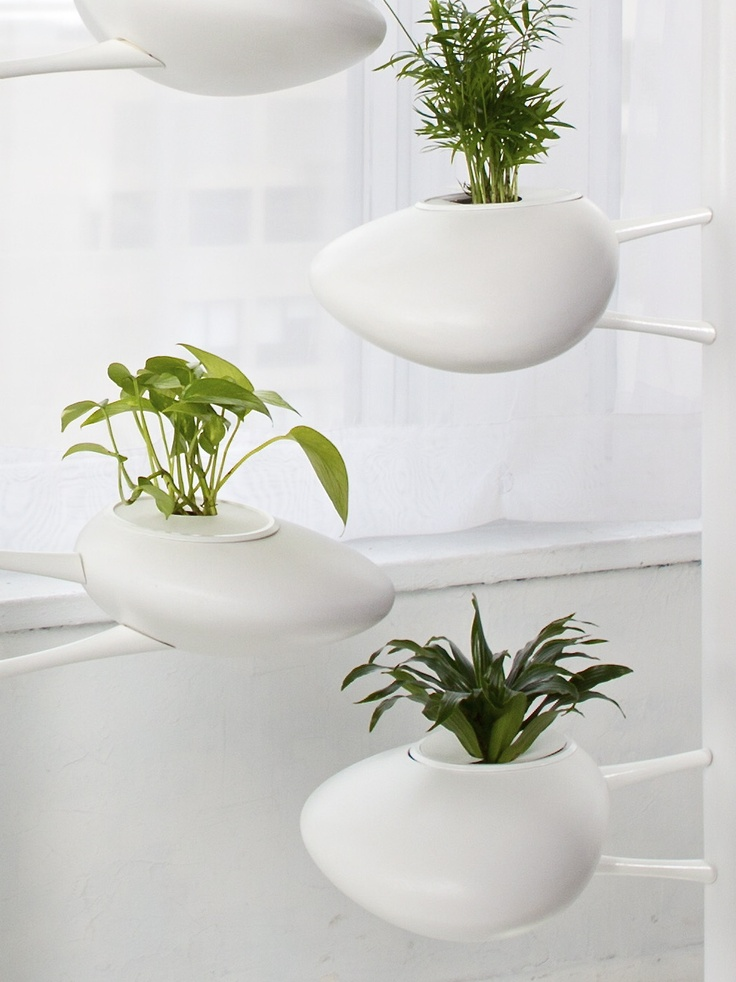 9 best hydroponic vertical garden images on pinterest for Indoor gardening accessories