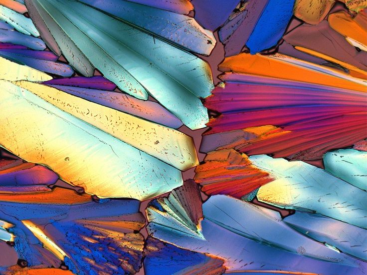 Photomicrograph Image, Aperol - National Geographic Photo of the Day
